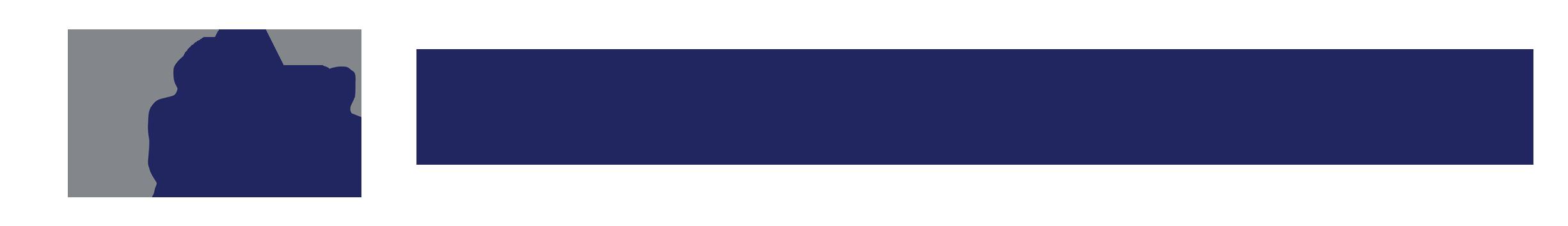 steinbauer-logo-trans